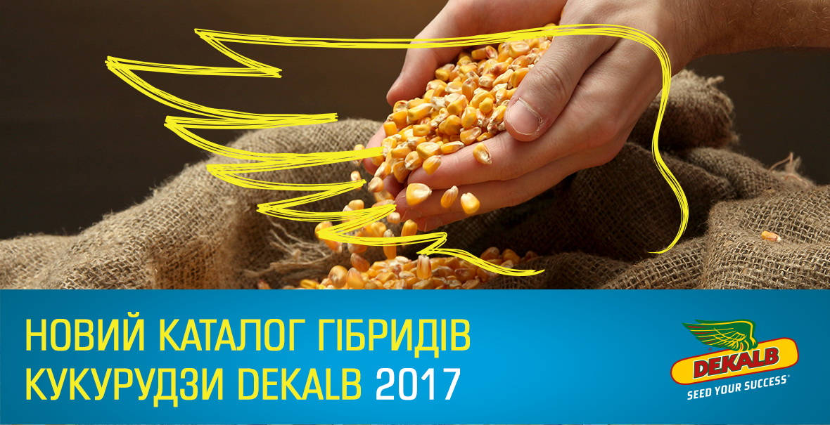 Corn Catalogue 2017